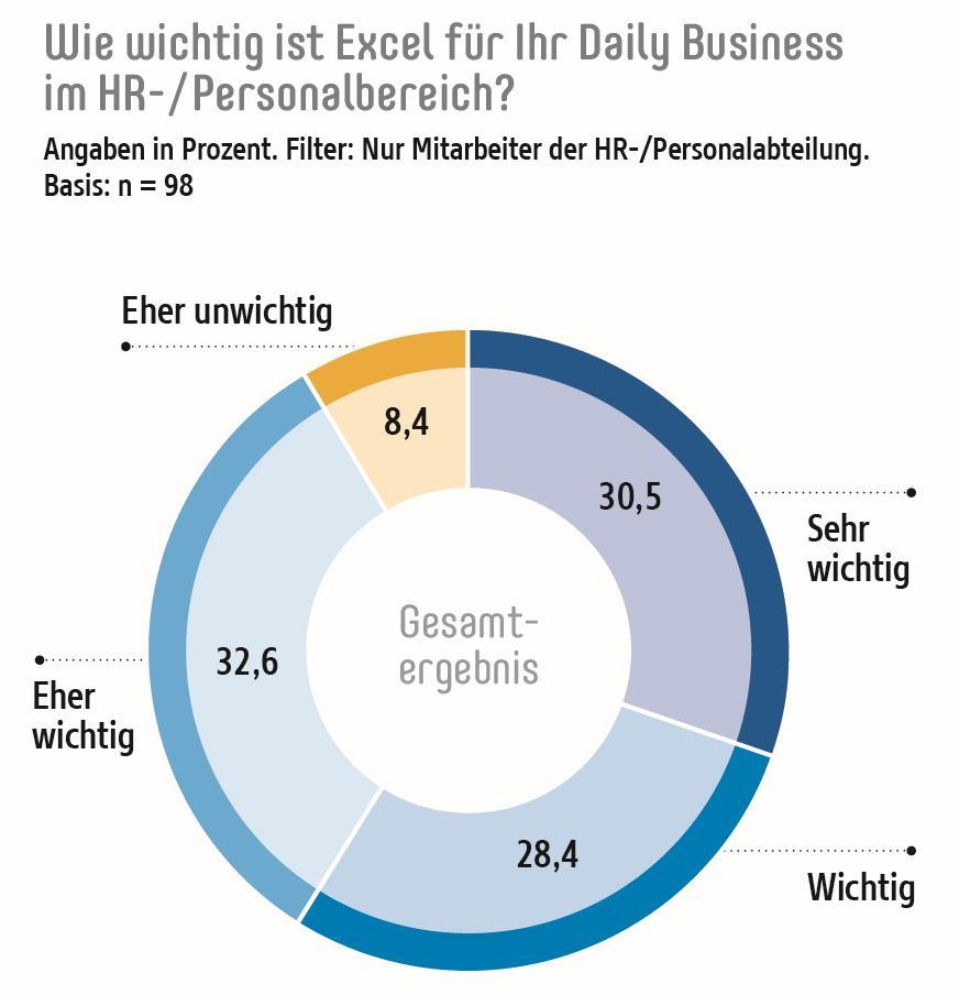Wie wichtig ist Excel für ihr daily Business im HR Bereich